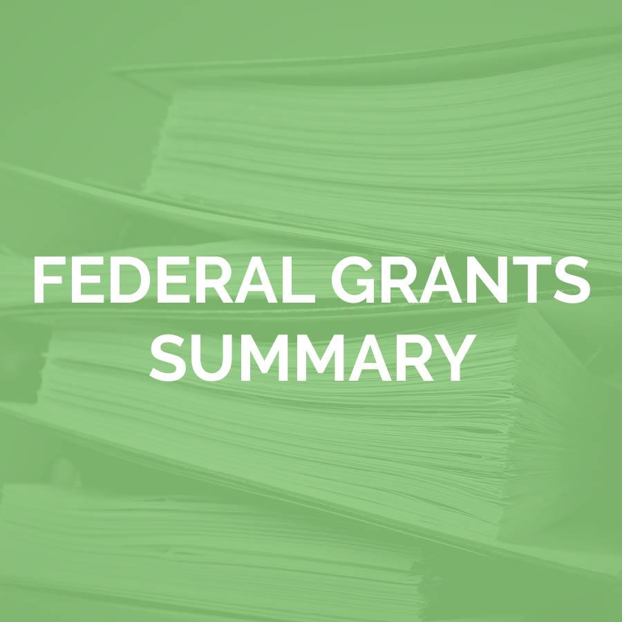 Federal Grants Summary
