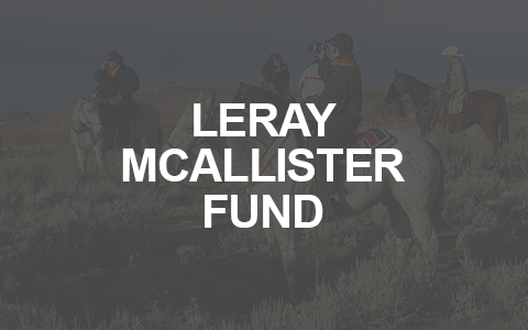 LERAY MCALLISTER FUND